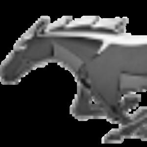 Ford_Mustang_Roush